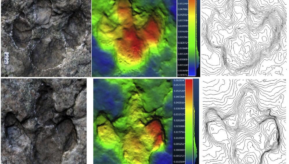 Tras el rastro de un dinosaurio cojo en La Rioja
