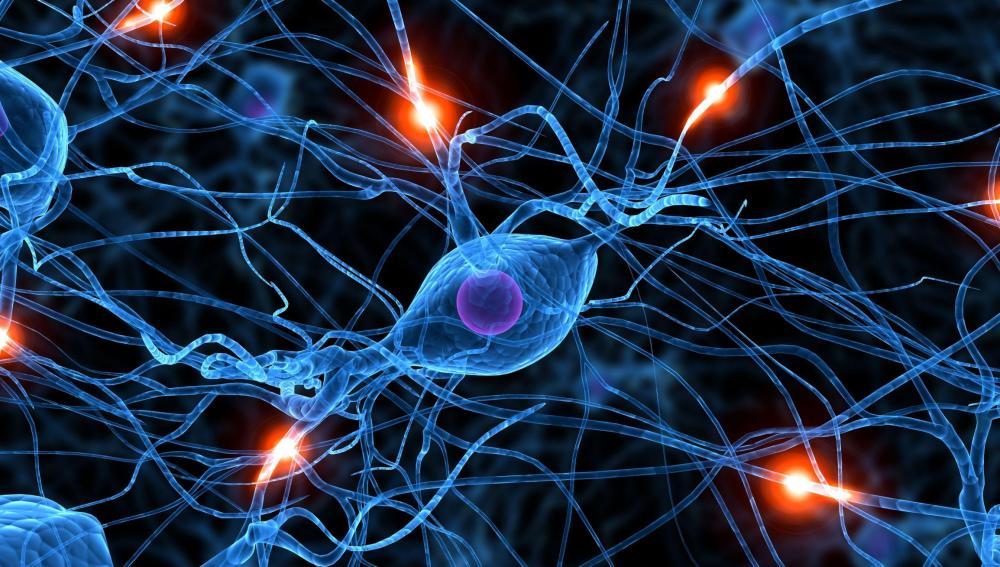 Conjunto de neuronas