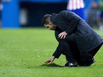 Simeone coloca el césped del Vicente Calderón
