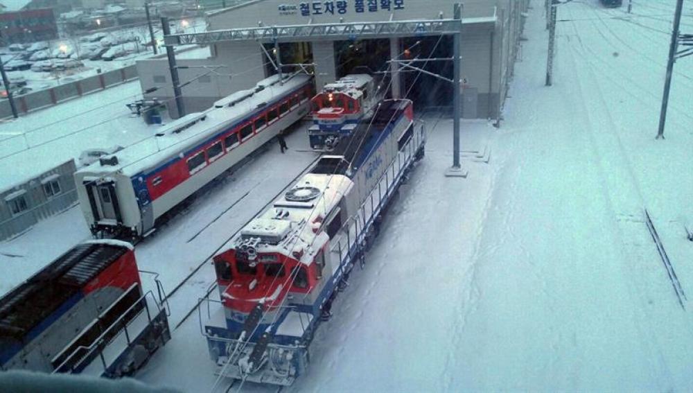 Vista de trenes cubirertos de nieve