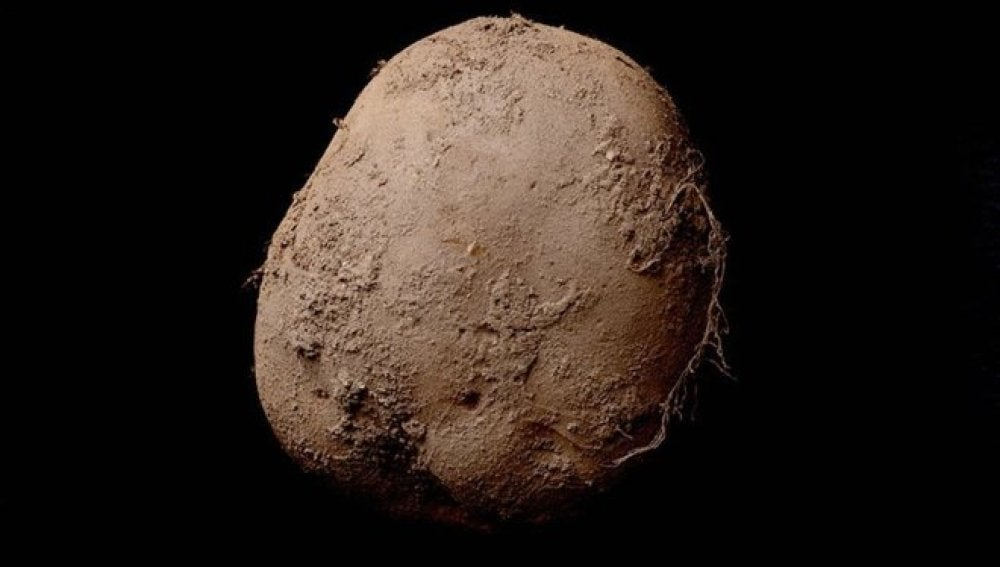 'Potato #345 (2010)' del artista Kevin Abosch