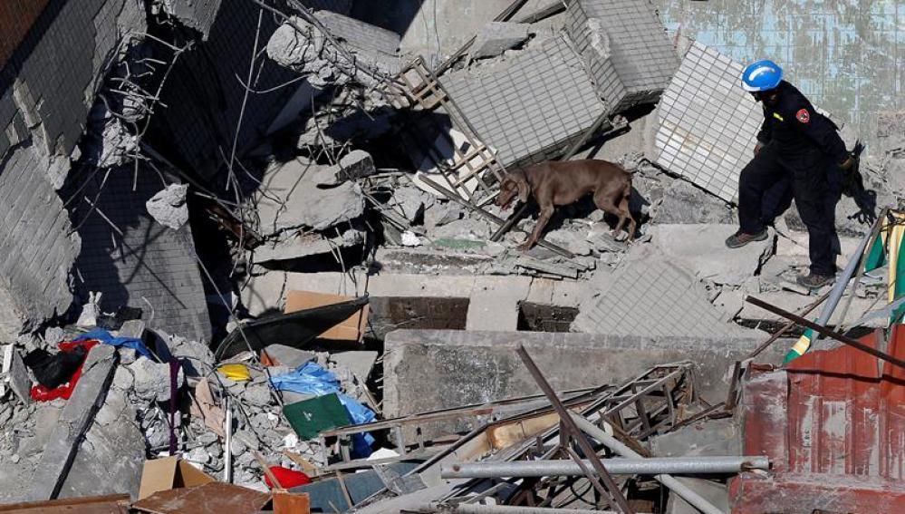 Equipos de rescate buscan personas entre los escombros