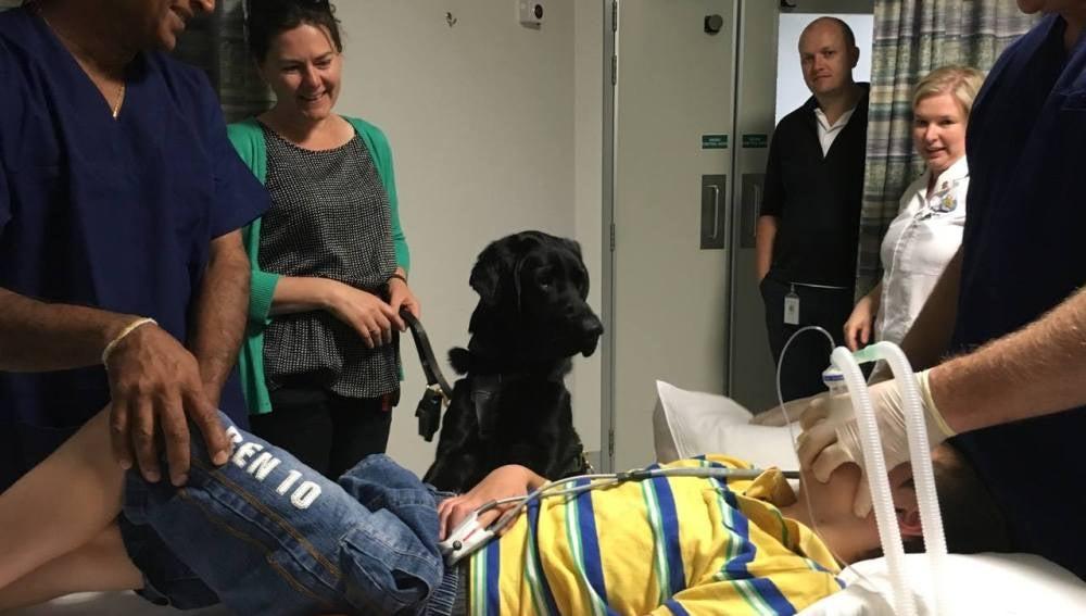 El hospital permitió que Mahe acompañara a su dueño