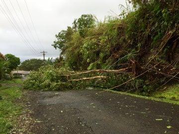 El ciclón Winston arrasa Fiyi