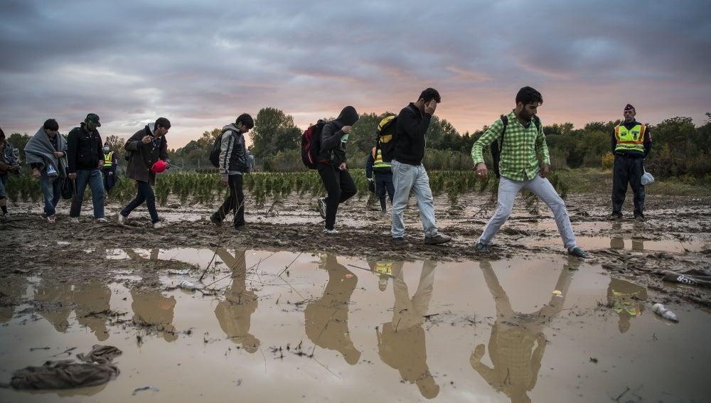 Refugiados en la frontera de Hungría
