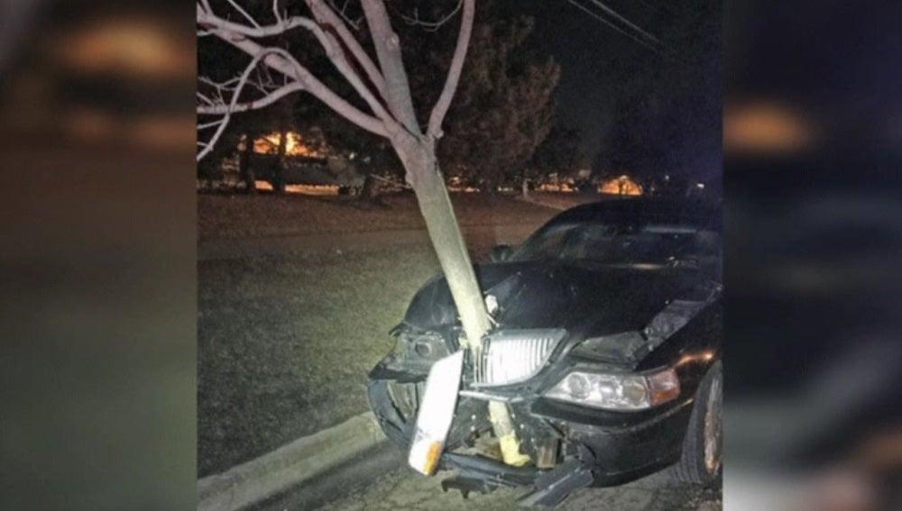 Un árbol incrustado en el capó de un coche