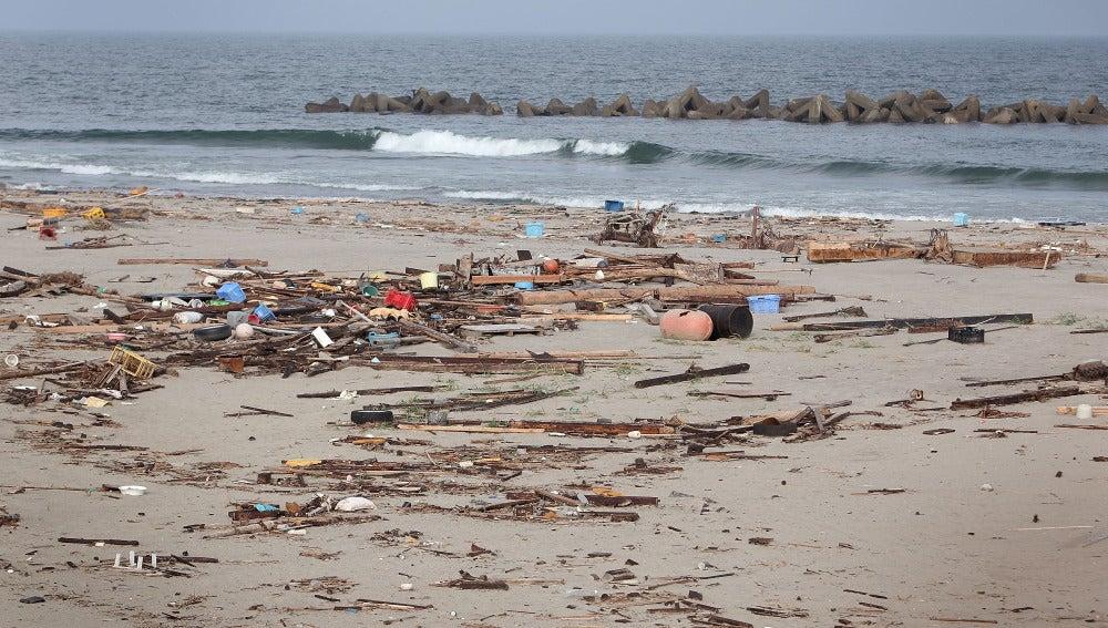 Las olas alcanzaron una altura de hasta 13 metros