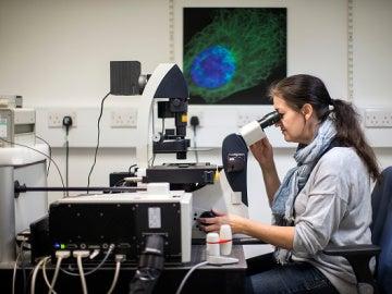 Científicos estadounidenses investigan contra el cáncer