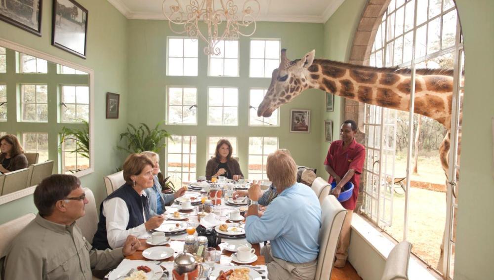 Comensales con una jirafa