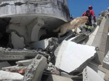 Daiko ayudando en las tareas de rescate del terremoto de Ecuador