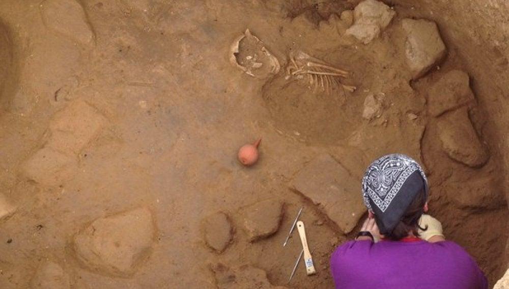 Restos óseos del niño encontrado en el yacimiento Font de la Canya