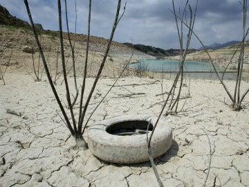 Sequía en una reserva de Crevillente (Valencia).