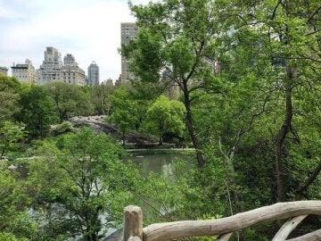 Hallet Sanctuary en Central Park