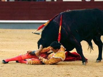 El diestro Paco Ureña sufre una cogida en la Feria de San Isidro