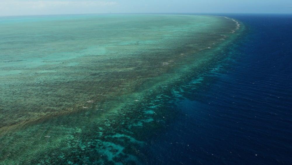 La Gran Barrera de Coral, en Australia