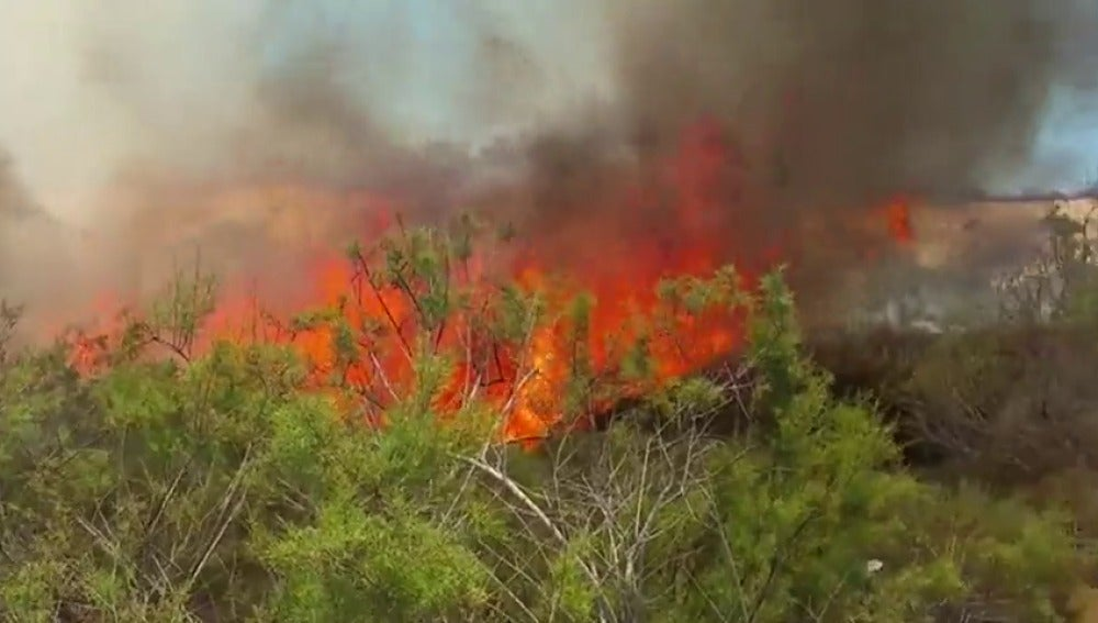 Frame 42.145053 de: No se descarta que el fuego fuera intencionado