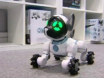 Frame 26.233652 de: Humanoides, mascotas robotizadas o vehículos plegables se presentan en Valencia