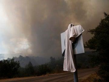 Vista general del incendio declarado en Dervenohoria, al noroeste de Atenas (26-06-2016)