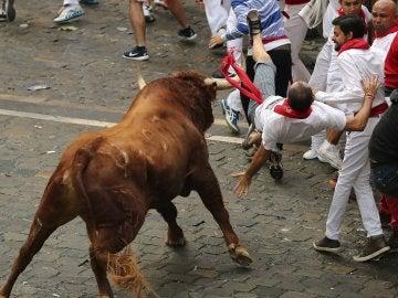 Un toro de la ganadería de Yeltes voltea a un mozo en la Plaza Consistorial