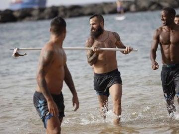 Los jugadores del Tenerife matan a una cría de tiburón