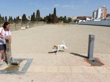 El parque para perros de Málaga