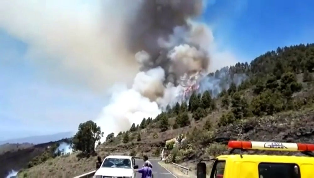 Frame 16.407994 de: Un incendio calcina un bosque de pinos en La Palma