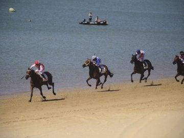 Los caballos en la playa de Sanlúcar.
