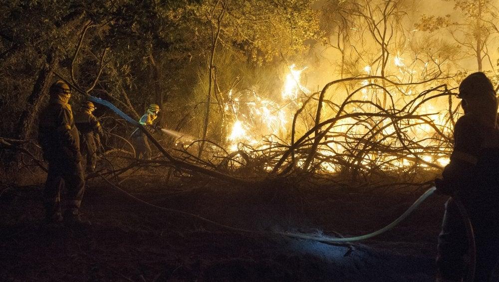 En la imagen, brigadistas trabajando para sofocar las llamas del incendio forestal declarado a última hora de la tarde de ayer en Cualedro