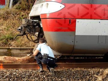 Accidente de tren por la caída de un árbol en el sur de Francia