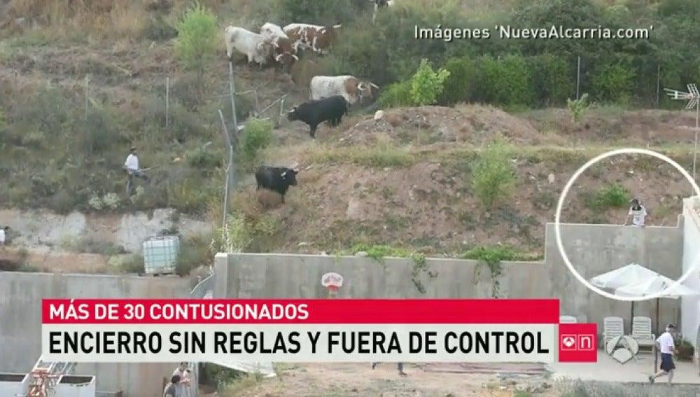 Frame 11.706219 de: toros guadalajara