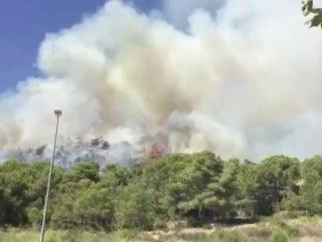 Frame 2.08387 de: Sospechan que el incendio que ya ha arrasado más de 11 hectáreas en Calafell (Tarragona) podría haber sido intencionado