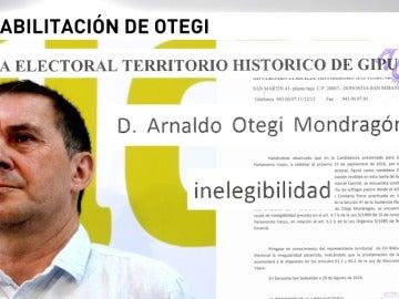 """Frame 14.60544 de: La Junta de Guipúzcoa dice que Otegi es """"inelegible"""" y que EH Bildu tendrá que subsanar el error antes del 29"""