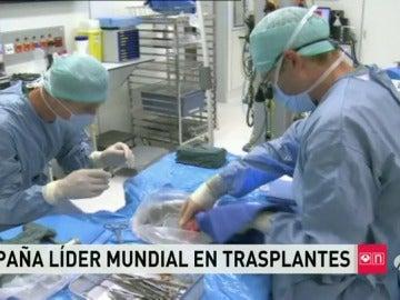Frame 68.979807 de: trasplantes