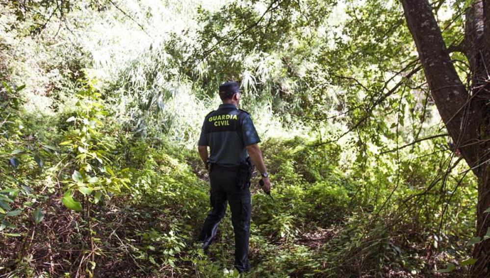 Un agente de la Guardia Civil peina la zona próxima al domicilio de Diana Maria Quer, desaparecida en Pobra do Caramiñal.