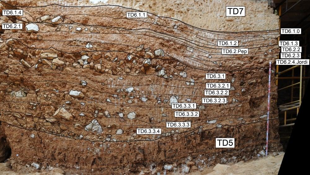 Gran Dolina, Atapuerca
