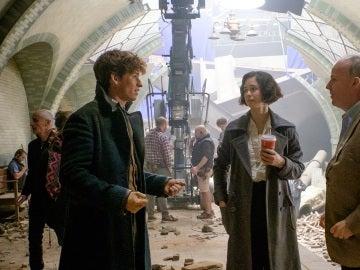 Eddie Redmayne, Alison Sudol y David Yates en el set de 'Animales Fantásticos'