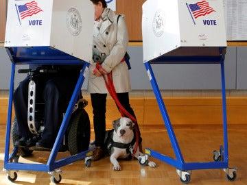 Un perro espera a que vote su dueño