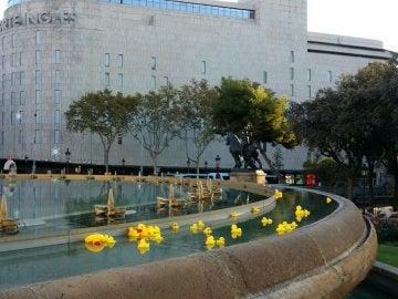Fuente de Barcelona con patitos de goma