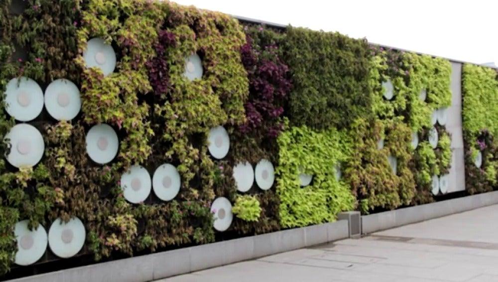 Antena 3 tv los jardines verticales una moda para for Edificios con jardines verticales