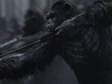 Imagen de 'Guerra por el Planeta de los Simios'