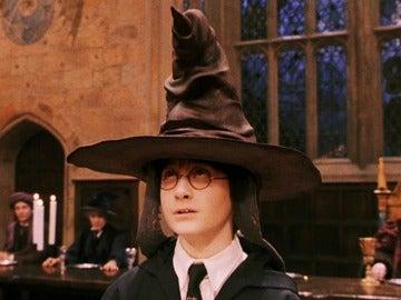 Harry Potter fue a Griffindor... ¿a dónde irás tú?