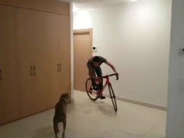 Contador, con su perro