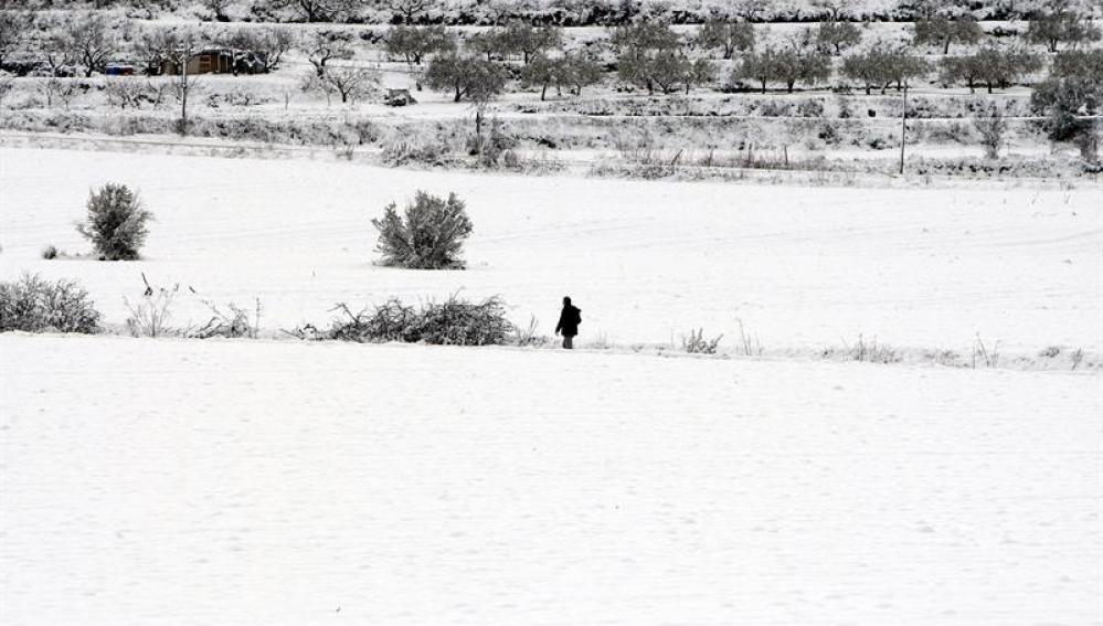 Un hombre camina por la nieve en el municipio de Benassau (Alicante)