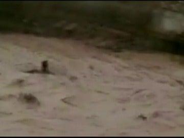 Frame 2.021926 de: Las cámaras captan cómo el río desbordado se lleva a una persona