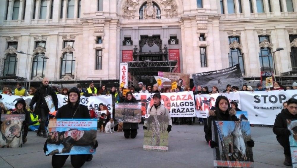 Manifestación contra el maltrato animal en Madrid