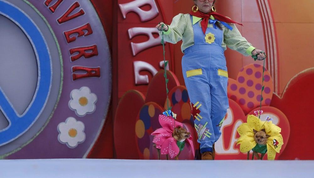 Manolito y Lupita, los ganadores del carnaval canino