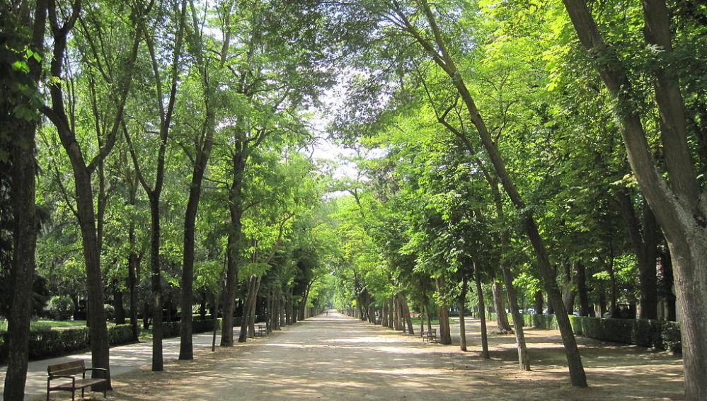 Paseo de la Isla de Burgos