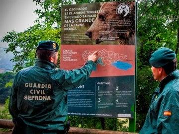 Dos agentes del Seprona de la Guardia Civil observan un cartel sobre el oso pardo