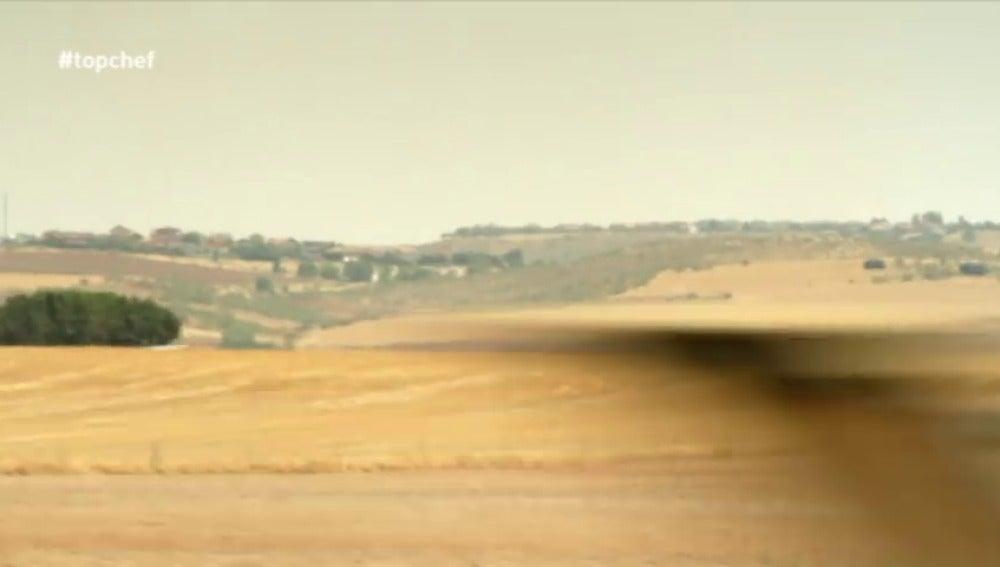 Frame 19.361111 de: 'Top Chef' superó su reto en Valladolid
