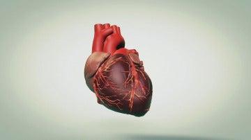 La memoria del corazón, a examen en la ficción de 'Pulsaciones'